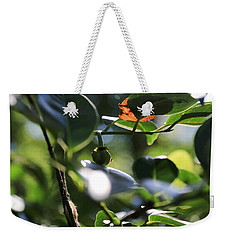 Small Nature's Beauty Weekender Tote Bag by Christopher L Thomley