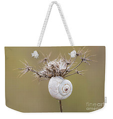 Small Snail Shell Hanging From Plant Weekender Tote Bag by Gurgen Bakhshetsyan
