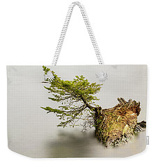 Small Tree On A Stump Weekender Tote Bag