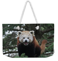 Smiling Red Panda #2 Weekender Tote Bag