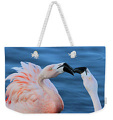 Smooches  Weekender Tote Bag by Shoal Hollingsworth