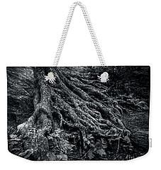 Weekender Tote Bag featuring the photograph Smugglers' Notch Vermont Trees And Roots 1 by James Aiken