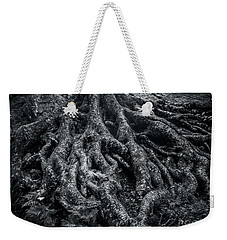 Weekender Tote Bag featuring the photograph Smugglers' Notch Vermont Trees And Roots 2 by James Aiken