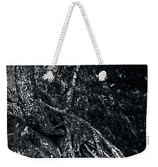 Weekender Tote Bag featuring the photograph Smugglers' Notch Vermont Trees And Roots 3 by James Aiken