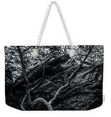 Weekender Tote Bag featuring the photograph Smugglers' Notch Vermont Trees And Roots 4 by James Aiken