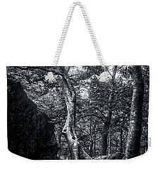 Weekender Tote Bag featuring the photograph Smugglers' Notch Vermont Trees And Roots 5 by James Aiken
