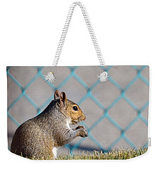 Snack Time Weekender Tote Bag by Kathy Eickenberg
