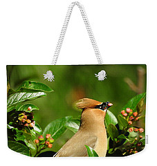 Weekender Tote Bag featuring the photograph Snacking by Betty-Anne McDonald