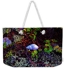 Snail In Eden Weekender Tote Bag by Craig Wood