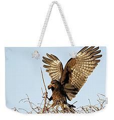 Snail Kite Coming In Weekender Tote Bag