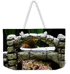 Weekender Tote Bag featuring the photograph Snail Over A Bridge by Robert Knight