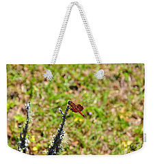 Weekender Tote Bag featuring the photograph Shimmering Saddlebags by Al Powell Photography USA