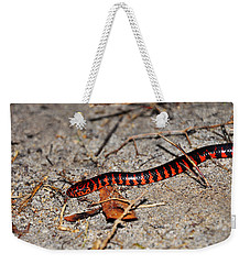 Weekender Tote Bag featuring the photograph Snazzy Snake by Al Powell Photography USA
