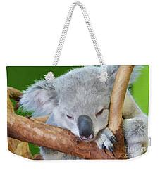 Snoozing Koala Bear Weekender Tote Bag