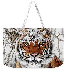 Snow Capped Siberian Weekender Tote Bag