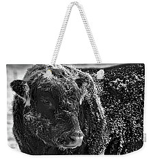 Snow Covered Ice Bull Weekender Tote Bag
