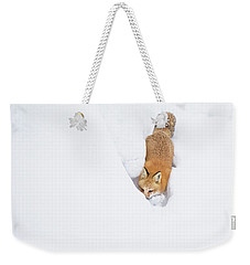 Weekender Tote Bag featuring the photograph Snow-diving Fox  by Mircea Costina Photography