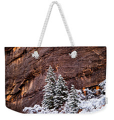 Weekender Tote Bag featuring the photograph Snow Globe by Dustin LeFevre