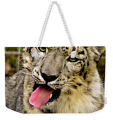 Weekender Tote Bag featuring the photograph Snow Leopard 2  by Ayasha Loya
