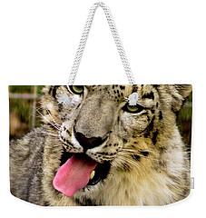 Snow Leopard 2  Weekender Tote Bag by Ayasha Loya