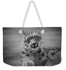 Weekender Tote Bag featuring the photograph Snow Leopard  Bw by Sandy Keeton
