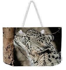 Weekender Tote Bag featuring the photograph Snow Leopard by Lisa L Silva