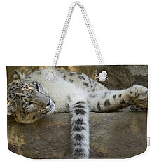 Snow Leopard Nap Weekender Tote Bag by Mike  Dawson