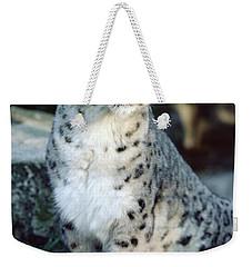 Weekender Tote Bag featuring the photograph Snow Leopard Uncia Uncia Portrait by Gerry Ellis