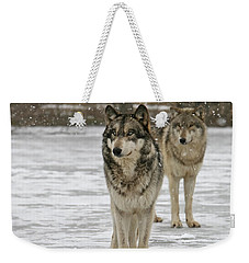 Snow Mates Weekender Tote Bag by Shari Jardina