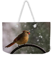 Weekender Tote Bag featuring the photograph Snow Showers Female Northern Cardinal by Terry DeLuco