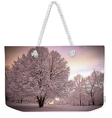 Snow Tree At Dusk Weekender Tote Bag