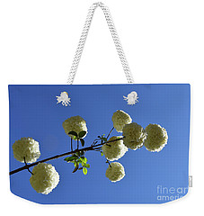 Weekender Tote Bag featuring the photograph Snowballs On A Stick by Skip Willits
