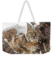 Snowy Bobcat Weekender Tote Bag