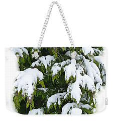 Weekender Tote Bag featuring the photograph Snowy Cedar Boughs by Will Borden