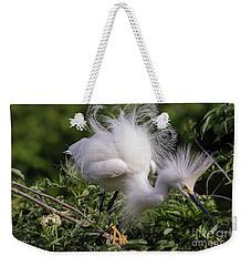 Snowy Decsending Weekender Tote Bag