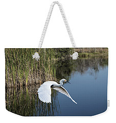 Snowy Egret Flying Over Blue Lake Weekender Tote Bag