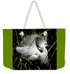Weekender Tote Bag featuring the photograph Snowy Egret by Steven Sparks