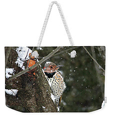 Snowy Northern Flicker Weekender Tote Bag by Trina Ansel