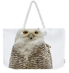 Snowy On A Wire Weekender Tote Bag