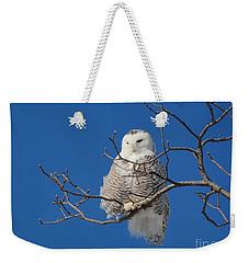 Snowy Owl 7 Weekender Tote Bag