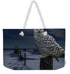 Snowy Owl On A Winter Night Weekender Tote Bag