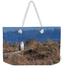 Weekender Tote Bag featuring the photograph Snowy Owl On Log by Sharon Talson