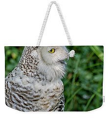 Weekender Tote Bag featuring the photograph Snowy Owl by Patricia Hofmeester