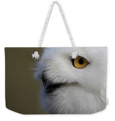 Snowy Owl Up Close Weekender Tote Bag by Steve McKinzie