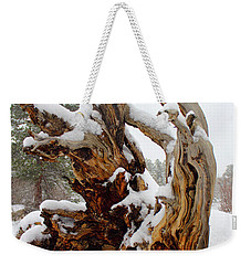 Weekender Tote Bag featuring the photograph Snowy Roots 2 by Shane Bechler