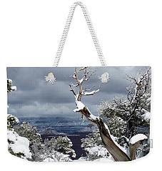 Weekender Tote Bag featuring the photograph Snowy View by Laurel Powell