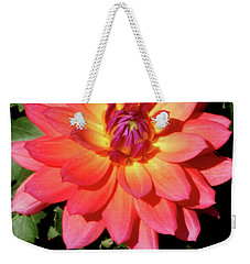 Soaking In The Sun Soaking In The Sun Dahlia Flower Weekender Tote Bag