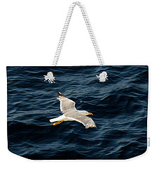 Weekender Tote Bag featuring the photograph Soaring Above The Deep Blue Sea by Sue Melvin