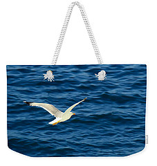 Weekender Tote Bag featuring the photograph Soaring Over The Mediterranean by Sue Melvin