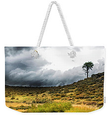 Weekender Tote Bag featuring the photograph Solitary Pine by Frank Wilson